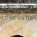 1. MAGNANIMIS SIRIAE IACET HOC SUB TEGMINE PRINCEPS