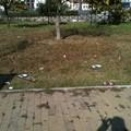 Scandalo a Parco Almirante - Canosa
