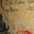 Sindaci De Salvia - Vito Rosa