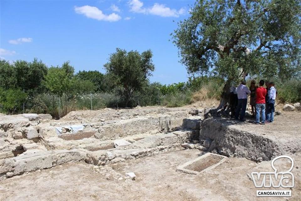 Tra gli ulivi, visita guidata nel Parco Archeologico San Leucio Canosa di Puglia