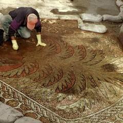 Mosaico Palma del  Kathisma