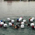 Calaponte Open Water