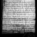 Pergamena bolla papale