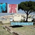 Saluti da Canosa di Puglia(BT)