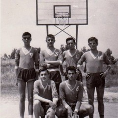 Basket Canosa