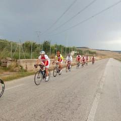 Gruppo Sortivo Ciclistico AVIS di Montevarchi