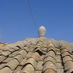 La pigna sul tetto della Cattedrale di S. Sabino - Canosa