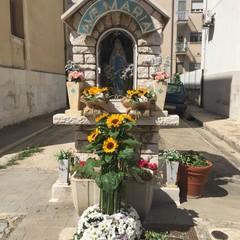 Canosa Via Corsica Edicola Mariana di Lourdes