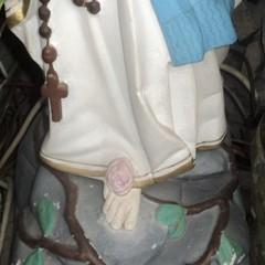 Le rose della Madonna
