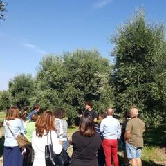 Turisti a Canosa di Puglia
