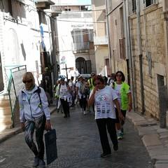 A Canosa, i viandanti di Barletta sulla via Francigena