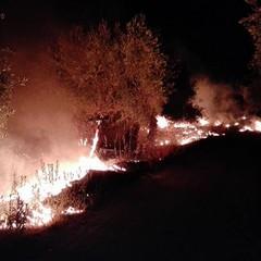 Canosa: Incendi vicino S. Leucio
