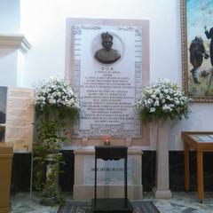 Cattedrale S.Sabino: P.A.M.Losito Venerabile