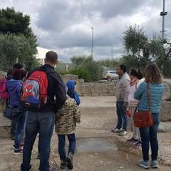 Parco Archeologico S.Leucio- Canosa di Puglia