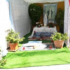 Canosa di Puglia(BT): La devozione per l'Assunta Altarini