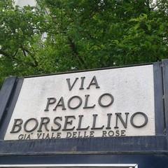 Canosa di Puglia Via Paolo Borsellino