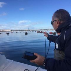 Monitoraggio Molluschicoltura