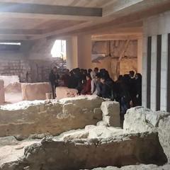 Tour Archeologico Canosa di Puglia