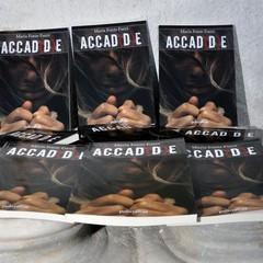 Presentazione del romanzo  ACCAD(D)E di Maria Fonte Fucci