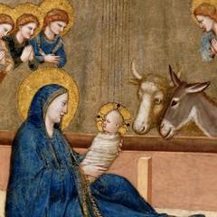 E' Natale «Lo avvolse in fasce» Assisi