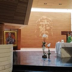 Mons. Felice Bacco  Festa San Sabino a Torino