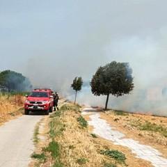 Canosa: a fuoco l'area archeologica del Tratturo Regio