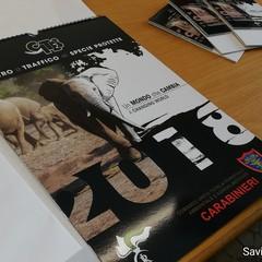 Calendario dei Carabinieri Forestale