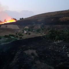 2020 Incendio Collina di Via Corsica