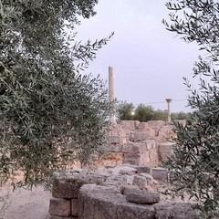 Canosa di Puglia Parco Archeologico San Leucio