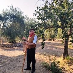 Le pere di Sant'Anna Canosa di Puglia - Maestro Peppino Di Nunno