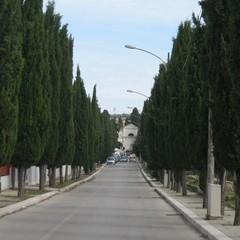 Via agli Avelli Canosa di Puglia