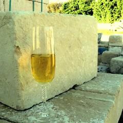 Il buon vino canosino