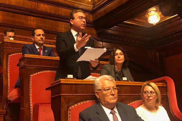 Senatore Dario Damiani
