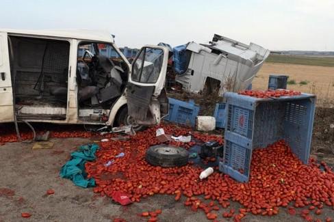 Incidente stradale Raccolta pomodoro