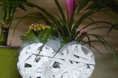 S.Valentino fiori cuore