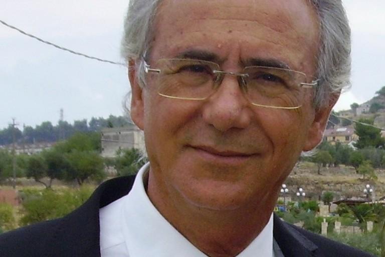 Ing. Domenico Serlenga