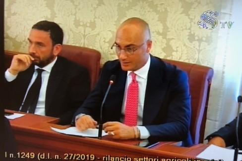 Vicepresidente Nazionale Coldiretti Granieri-Presidente Cold. Puglia Muraglia