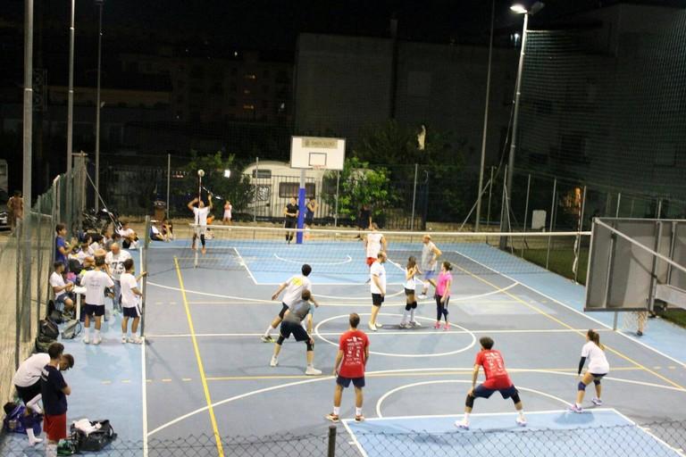 2019 Volley