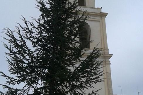 2019 Albero di Natale Piazza Vittorio Veneto