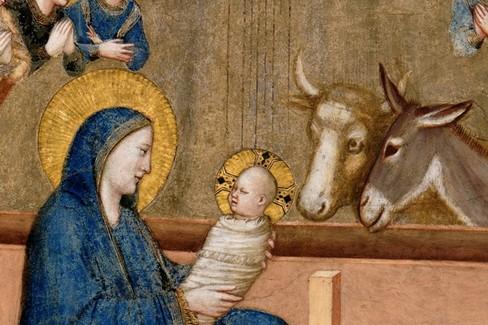 Assisi Natività