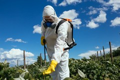 Agriturismi:il vademecum per la sicurezza anti Covid-19