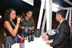 Puglia: cultura del vino scoperta di un territorio