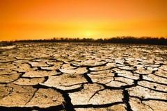 Fermare i mutamenti climatici che mettono a rischio il futuro del pianeta