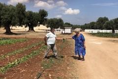 La vera agricoltura sociale fa bene all'Italia