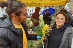 Tra i tradizionali mazzetti di mimosa e i menù salutistici
