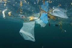 Le spiagge italiane sono soffocate da rifiuti d'ogni genere