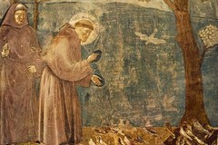 San Francesco d'Assisi, solenni festeggiamenti