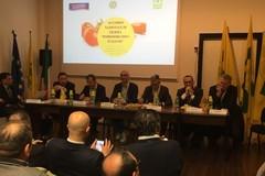 """Sostenibilità filiera pomodoro """"100% Made in Italy"""""""