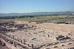 Giornate Europee del Patrimonio 2020: riapre ilMuseo Archeologico di Egnazia