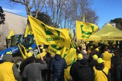 La rabbia degli agricoltori in Piazza Montecitorio